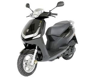 Peugeot-Roller-Vivacity-sw-300x263